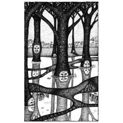 Envers des troncs noirs